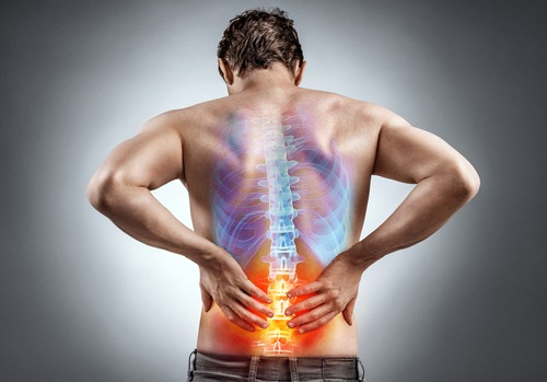 Disabling low back pain a universal injury